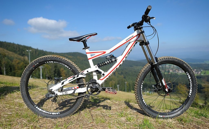 Specialized / 200mm / Glose White n' Red n' Black / 1/20